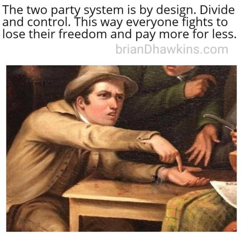 The Two Party Political System - Divide And Control